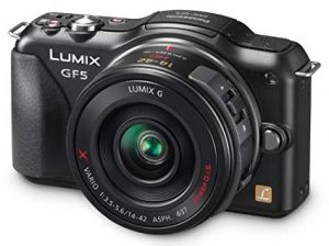 Panasonic Lumix DMC GF5W Digital Camera
